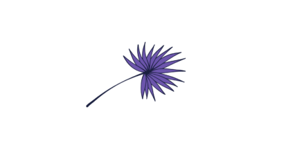 Indigo color flower