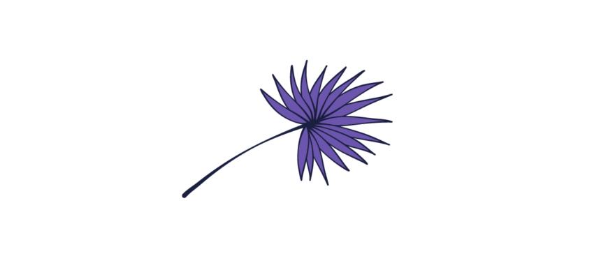 Indigo color flower
